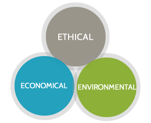 Sustainable production: Etchical, environmental, economic
